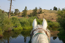 Beaver Meadows Stables, Red Feather Lakes, United States