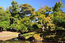 Genkyuen Garden, Hikone, Japan