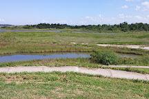 Baytown Nature Center, Baytown, United States