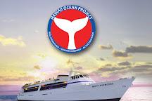 Lahaina Cruise Company, Lahaina, United States