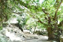 Ancient Lappa, Argyroupolis, Greece
