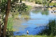 Contra Loma Regional Park, Antioch, United States