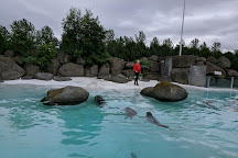 Reykjavik Family park and Zoo, Reykjavik, Iceland