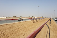 Dubai Camel Racing Club, Dubai, United Arab Emirates