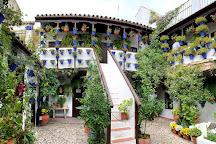 Los Patios De San Basilio, Cordoba, Spain