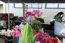 Waimea Homestead Farmers Market, Waimea, United States