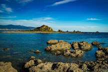 Owhiro Bay, Wellington, New Zealand