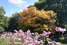 Trewidden Garden, Penzance, United Kingdom