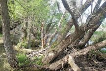 Tifft Nature Preserve, Buffalo, United States