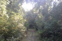 Scadbury Park, Chislehurst, United Kingdom