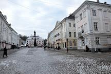 Tartu Art Museum, Tartu, Estonia