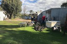 Tyler's Vineyard, Millendon, Australia