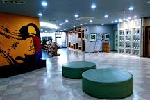 Daegu Yangnyeongsi Museum of Oriental Medicine, Daegu, South Korea