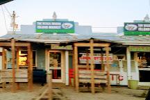 The Veggie Wagon, Carolina Beach, United States