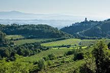 Olive Batllori Winery, Subirats, Spain