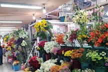 Mercado de Medellin, Mexico City, Mexico