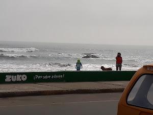 Barra marea 5