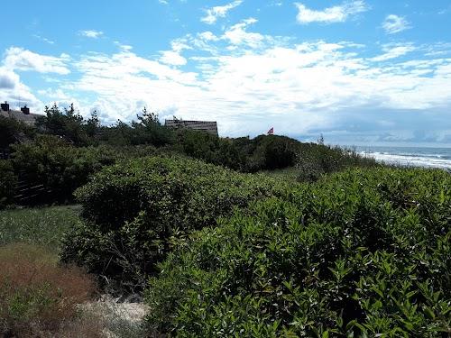 Šventoji.net - nameliai prie jūros - Kuršių takas, Palanga
