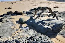Cutlers Beach, Wonthaggi, Australia