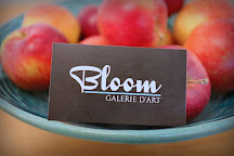 Galerie Bloom, Montreal, Canada