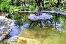 Saurabh Van Vihar, Palampur, India