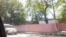 Jamshedpur women's college jamshedpur
