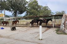 Sea Horse Ranch, Half Moon Bay, United States