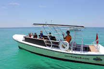 Flippers Dolphin Tours, Panama City Beach, United States