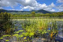 Cattana Wetlands, Smithfield, Australia