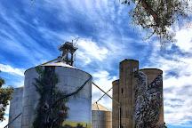 Devenish Silo Art, Benalla, Australia