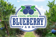 Cool Springs Blueberry Farm, Gainesville, United States