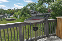 The Fishway, Thornbury, Canada