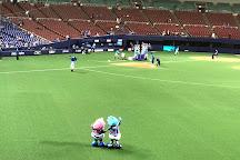 Nagoya Dome, Nagoya, Japan