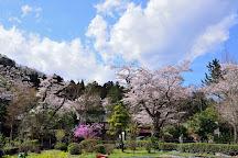 Kogonji Temple, Akiruno, Japan