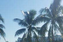 Bayshore, Miami, United States