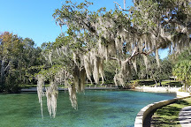Salt Springs Recreation Area, Salt Springs, United States
