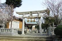 Bizan Park, Tokushima, Japan