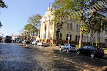 Basilica Nossa Senhora do Patrocinio, Araras, Brazil