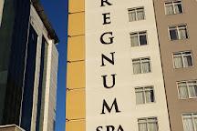 Regnum Spa, Gaziantep, Turkey