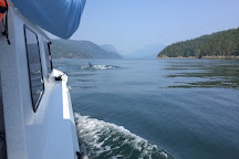 CR Sport Fishing, Campbell River, Canada