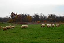 Stratford Ecological Center, Delaware, United States