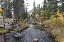 Inyo National Forest, California, United States