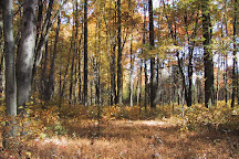 French Creek State Park, Elverson, United States