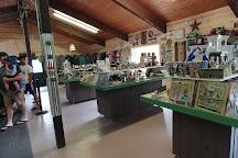 FAWN DOE ROSA Wildlife Educational Park, Saint Croix Falls, United States