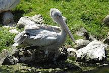 Zoo Salzburg, Anif, Austria