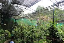 Kuala Lumpur Butterfly Park, Kuala Lumpur, Malaysia