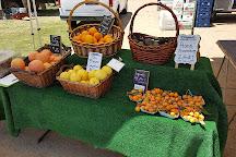 Leucadia Farmers Market, Encinitas, United States