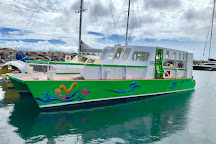 Kenneth's Dive Center, Basseterre, St. Kitts and Nevis