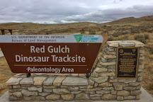 Red Gulch Dinosaur Tracksite, Greybull, United States