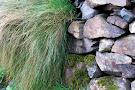 Twelve Bens of Connemara